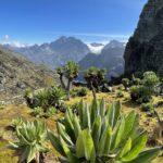 Oeganda - trekking