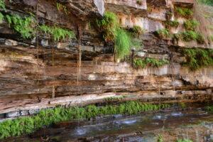 Australië - waterval