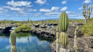 Ecuador - Galápagos - Isla Isabela