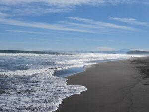 Kamchatka - kust