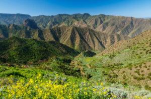 La Gomera - berglandschap