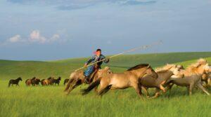 Mongolië - paardrijden