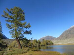 Mongolië - natuur