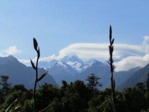 Nieuw Zeeland - natuur