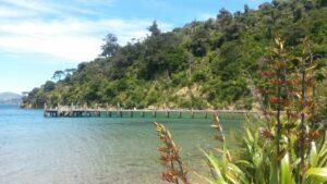 Nieuw Zeeland - baai