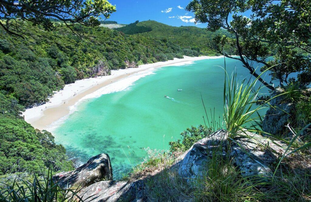 Nieuw Zeeland - Abel Tasman