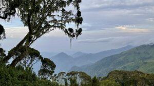 Oeganda - bergen