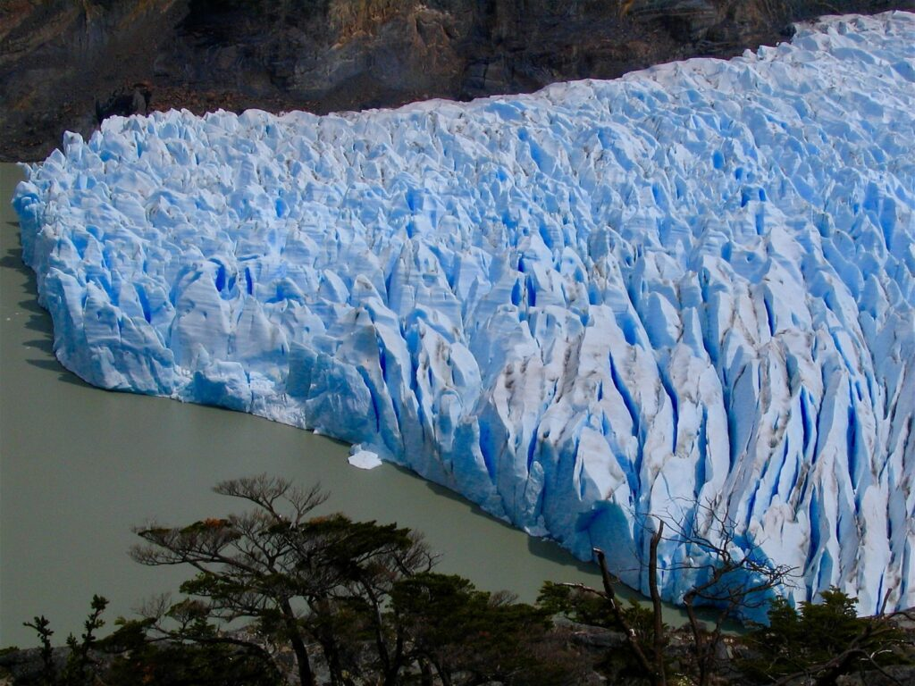 Patagonië - Grey gletsjer