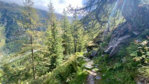 Zwitserland - bergpad