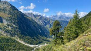 Zwitserland - vallei
