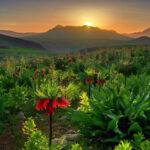 Iran - berg